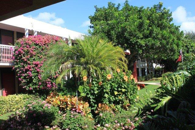 Airport Shuttle to and from Naples Ramada Hotel in and near Florida